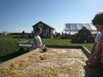 Fall 2011 Daytrip: Milk Pail Orchard
